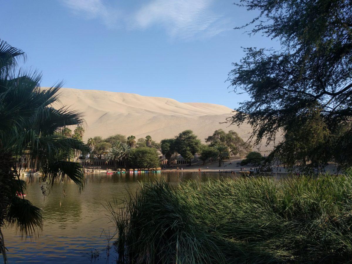 Pérou: Visite d'Ica et de Huacachina